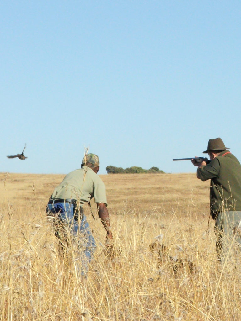 bird-hunting-south-africa