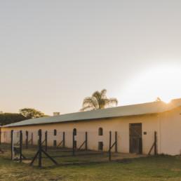 boavida-boarding-kennels